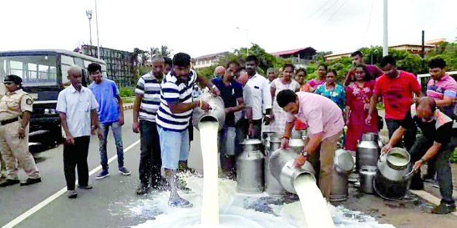 चार हजार लिटर दूध पर्वरीतील रस्त्यावर ओतले